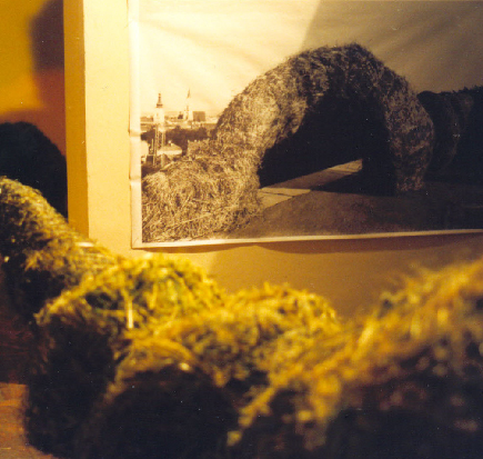 EB_Genesis_II_Cluj_National_Art_Museum_1998_5