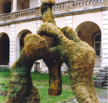 EB_Genesis_II_Cluj_National_Art_Museum_1998_8